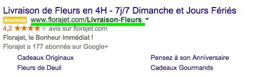 Optez pour des URL de destinations descriptives pour votre SEA